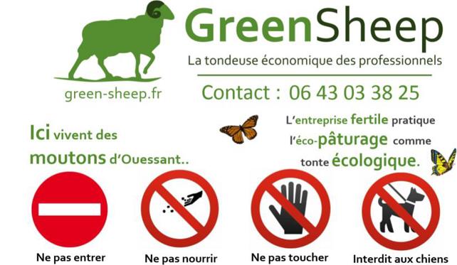 Greensheep - ecopaturage professionnel, ecopaturage entreprise